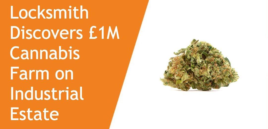Locksmith Discovers Cannabis Farm On Industrial Estate R