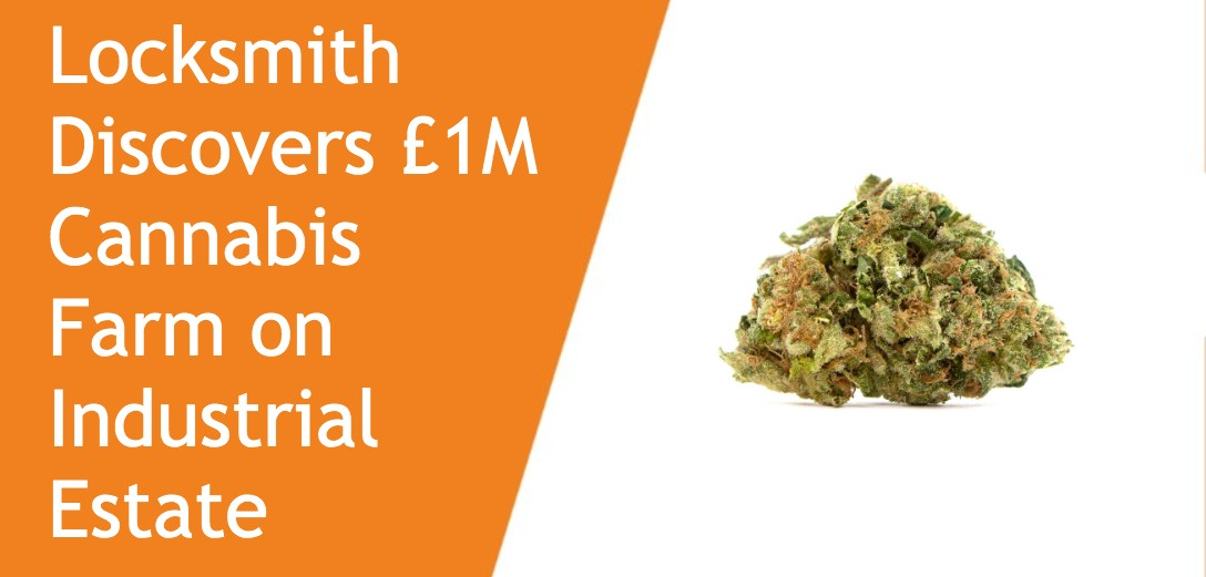 Locksmith Discovers £1M Cannabis Farm on Industrial Estate